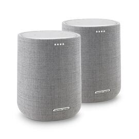 Harman Kardon Citation ONE DUO